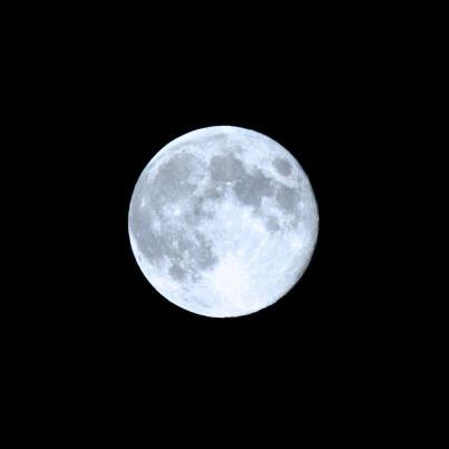 JT Blue Moon
