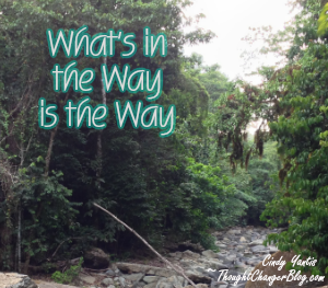 Whats in the way_j