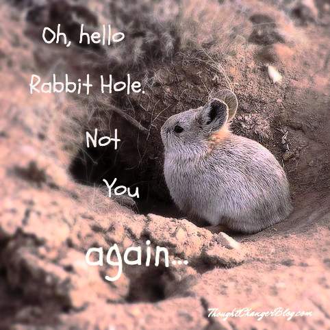 47a96793c0b How to Love the Rabbit Hole (Thought Changer)