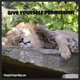 Permission Lion 2