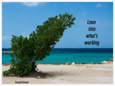 Lean into what's working